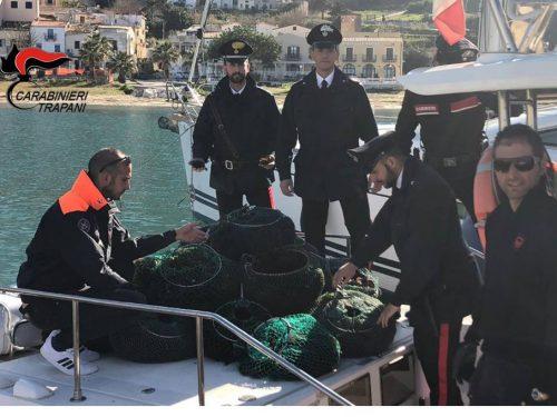 Sequestrati 15000 ricci di mare. Denunciati 6 palermitani