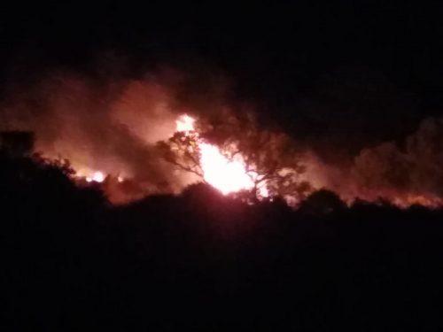 ATTENZIONE! Incendio in contrada Sciavania a Custonaci.