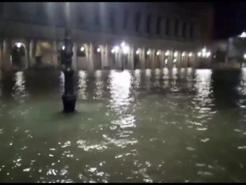 Apocalisse a Venezia, acqua alta 187cm, piazza San Marco è sommersa.