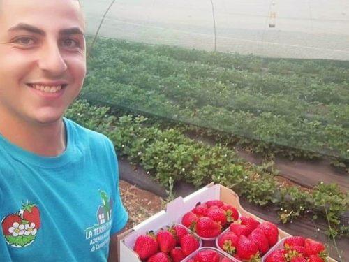 Valentino Cairone e le fragole dell'Etna, imprenditore agricolo a soli vent'anni.