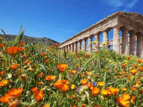 Ondata di caldo anomalo in Sicilia: sembra sia arrivata la primavera.