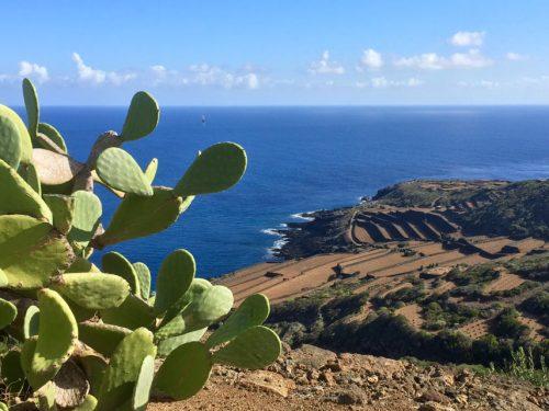 Tour virtuale del parco nazionale di Pantelleria: itinerario Montagna Grande e Kaggiar.