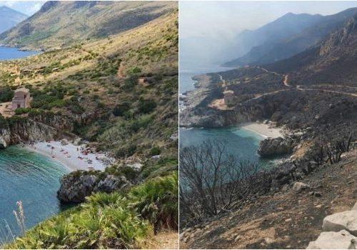 """In Sicilia è caccia ai piromani: """"fuoco appiccato in maniera scientifica affinché i danni fossero enormi"""""""