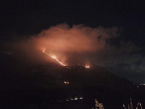 Brucia monte Sparagio: a rischio Bosco Giacolamaro, ultimo polmone verde della montagna