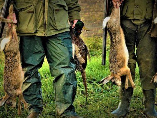Sospesa la caccia in Sicilia, il TAR di Palermo accoglie il ricorso delle associazioni ambientaliste