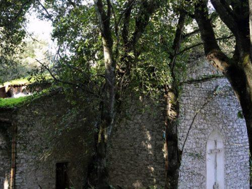 Crolla il tetto dell'ex Chiesa di S. Oliva a Erice. Era stata sede dell'UNESCO e di convegni culturali