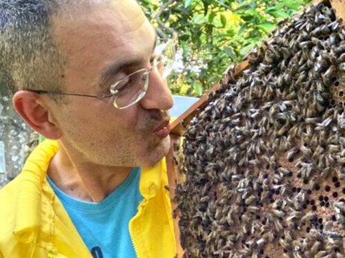 Andrea, il Marsalese affetto da sclerosi multipla che cura i dolori della malattia con il veleno d'api